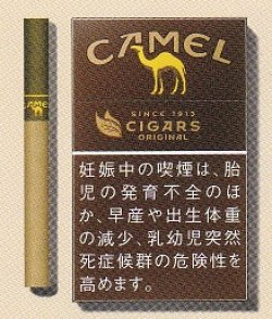 画像1: キャメル・シガー ボックス(日本)